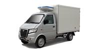Gonow auto Mini Truck Frigo vendus en Algérie